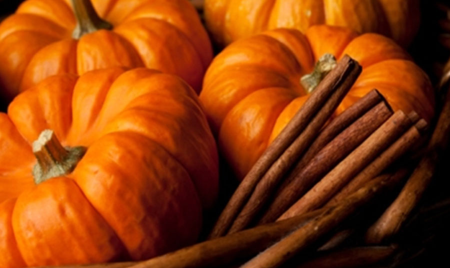 Pumpkin Body Scrub at Ellicott City Resort